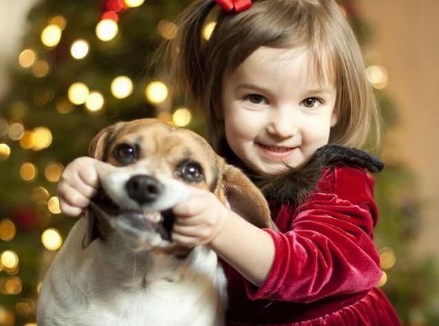 Niña con el perro