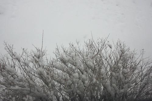 outside snow