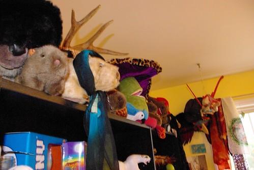 Over Ursula's shelves