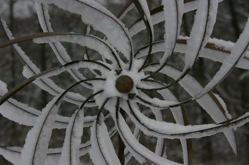 Dahlia spinner2, Dec 2010