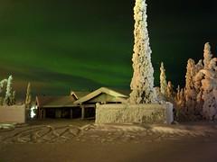 Northern Lights (timo_w2s) Tags: winter snow finland lapland kuusamo northernlights auroraborealis ruka revontulet
