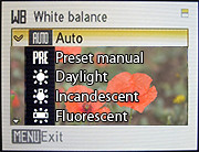 Setting the white balance on the camera