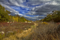 This Road Ahead of Us (bijoyKetan) Tags: fall colors landscape cloudy lynn emotions ketan canon1585mm bijoyketan