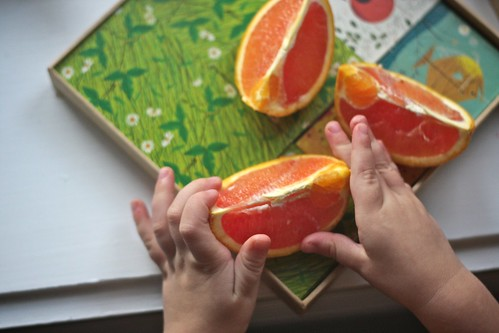 sharing oranges & a memory game