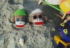A Day at the Beach (monkeymoments) Tags: shells beach sand monkeys sockmonkey animalhumor sockmonkeyhumor