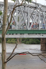 Watching the floods (NettyA) Tags: people river kayak january australia brisbane canoe queensland floods indooroopilly 2011 waltertaylorbridge bneflood qldfloods