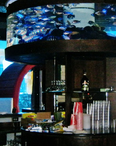 Bar at Nais Aquarium Restaurant