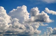Imagem 279 (andreapires) Tags: sunset pordosol sky cloud sun storm luz sol rain clouds sunrise natureza chuva cu prdosol nuvens storms montanhas tempestade raiosdesol muzambinho therebeastormabrewin cloudslightningstorms