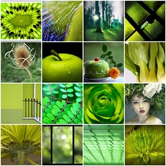 A touch of Green.... (Lady Haddon) Tags: green collage fdsflickrtoys mosaic photomosaic 2011 jan2011