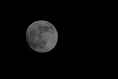 The Moon 18-01-2011 (Karen Roe) Tags: camera uk greatbritain winter england sky moon black night digital canon dark photography suffolk interesting bright zoom january full explore astronomy 75300mm dslr burystedmunds 2011 tonightsmoon 400d canoneos400d karenroe 18012011