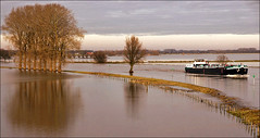 River IJssel at high tide (Foto Martien) Tags: winter holland water netherlands dutch flooding flood nederland rhine dieren doesburg ijssel veluwe hightide uiterwaarden gelderland floodplain riverijssel wateroverlast floodedriver rijndelta a550 floodedfarmland rhinedelta martienuiterweerd carlzeisssony1680 bestcapturesaoi martienarnhem gelderseijssel sonyalpha550 mygearandme mygearandmepremium martienholland mygearandmebronze mygearandmesilver mygearandmegold mygearandmeplatinum floodedlandscape ringexcellence dblringexcellence fotomartien tplringexcellence overtstroming overstroomdeakker overstroomdelandbouwgrond overstroomdlandschap floodedcultivatedfield