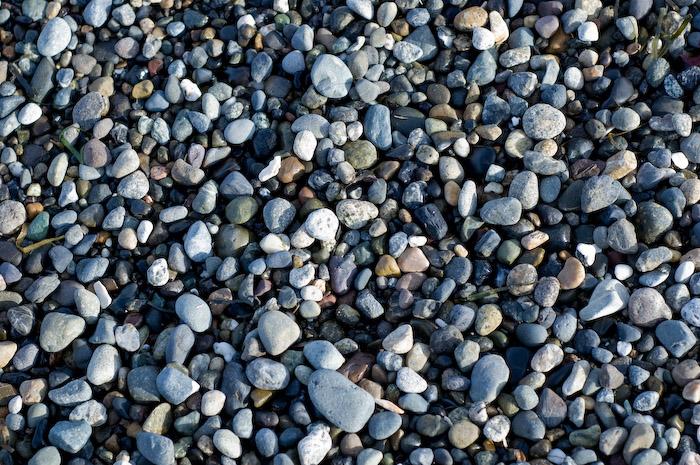 Alki Beach, West Seattle.