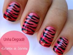 Degradê Rosa + Estampa de Zebrinha (Jullie Nail Art) Tags: pink zebra nailart unha degradê zebraprint estampadezebra unhadecorada gradientnails unhadodia estampadezebrinha
