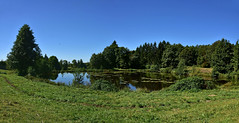 Etang des Grilloux (Diegojack) Tags: france vosges milletangs paysages calme eau verdure nature reflets srnit panorama beulottesaintlaurent