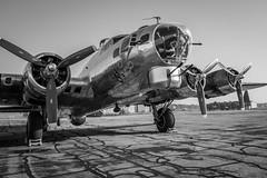 Yankee Air Museum's B-17 (BRB1952) Tags: b17 boeing yankeeairmuseum flyingfortress yankeelady willowrunairport