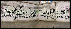 Rude & Seyb by RUDE (SPAM-3HC-TKO-JPP) (Thias (-)) Tags: terrain streetart paris wall painting graffiti mural spam rude spray urbanart painter graff aerosol 93 flop bombing spraycanart throwup pgc thias trac photograff 3hc frenchgraff seyb photograffcollectif