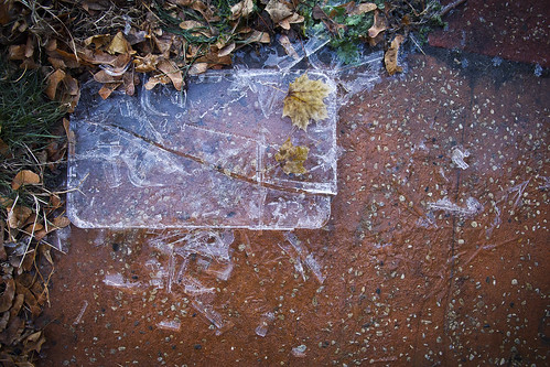 Autumn Ice Block