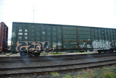 DSC_1405 (huntingtherare) Tags: train bench graffiti levis freight southbound rollingstock zeal benching