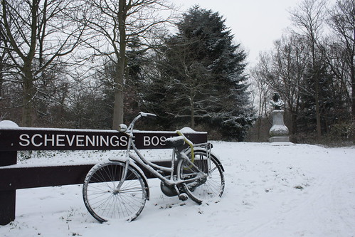 The Hague - snow