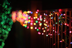 The magic of Christmas bokeh (kevin dooley) Tags: christmas xmas blue light red orange color green yellow canon fence eos 50mm lights colorful dof bokeh f14 14 depth lots christmaslight xmaslight aperature aplenty christmasland hbw 40d christmasbokeh xmasbokeh christmaslightbokeh xmaslightbokeh