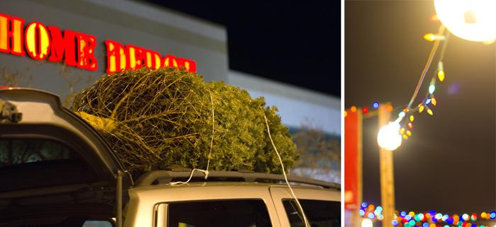 12-1-10 Christmas tree (52)copy