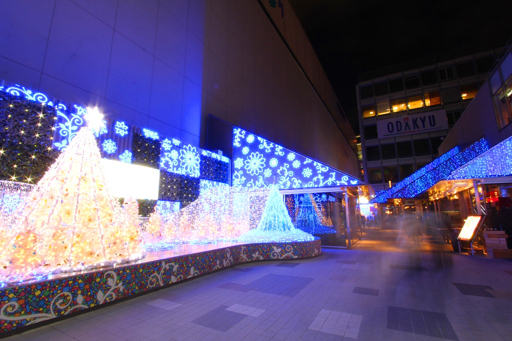 Shinjuku Xmas illumination 2010 (6)