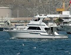 Kingfish 11 (Gerry Hill) Tags: cruise 2 harbor boat persian gulf harbour coastal oman muscat patrol seas brilliance kingfish mutrah