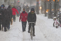 Snowstorm Bike Lane