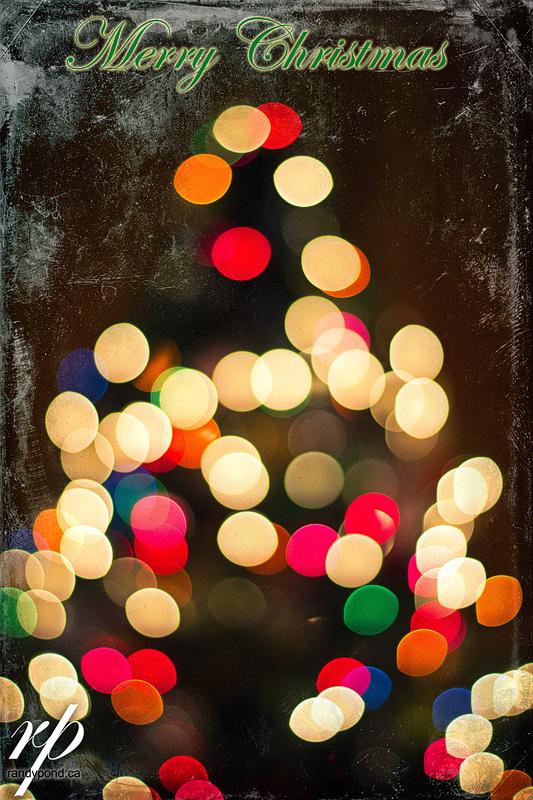 ~ 358/365 Christmas EVE ~
