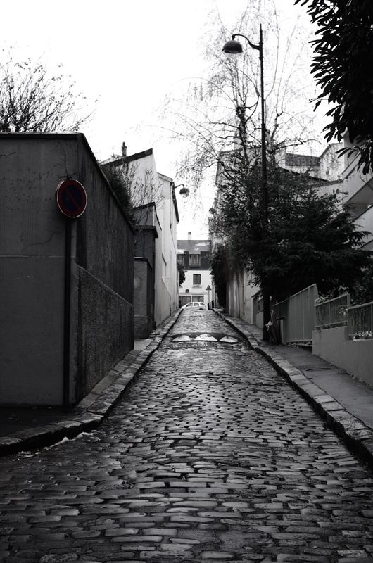 sortie Paris / La Butte aux cailles du 28 décembre 2010 - Page 5 5301000687_0a46929b62_o