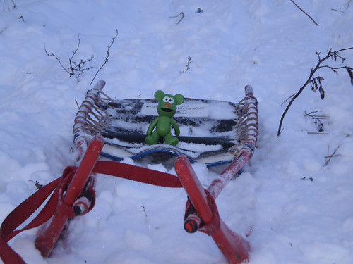 48/52 - sledding day