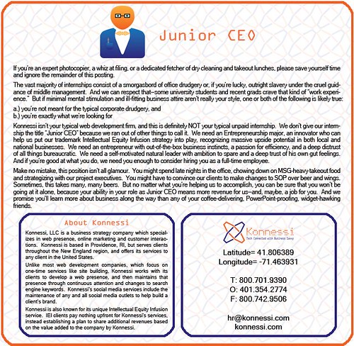 Junior CEO needed
