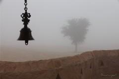 Stepping out - IMG_1736 (Swaranjeet) Tags: kheensvar jodhpur rajasthan thar desert india trees swaranjeet sjs efs1755f28isusm eos5dmkii landscape scape photos singh mumbai thane swaran swaranjeetsingh sjsvision sjsphotography swaranjeetphotography 2011 hindustan bharatvarsh indie canonef70200f28lisiiusm canon ef 70200 f28 is kheemsar kalbelia marwari marwar photographer indian