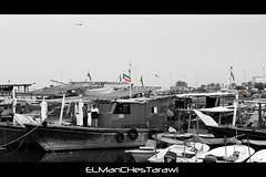 Kuwait Flags On Boats (ELManCHesTarawi) Tags: blackandwhite white black canon boats boat kuwait kuwaitcity الكويت كويت kuwaitflag بحر 550d كانون kuwaitboat kuwaitsea kuwaitflags canon550d kuwaitboats