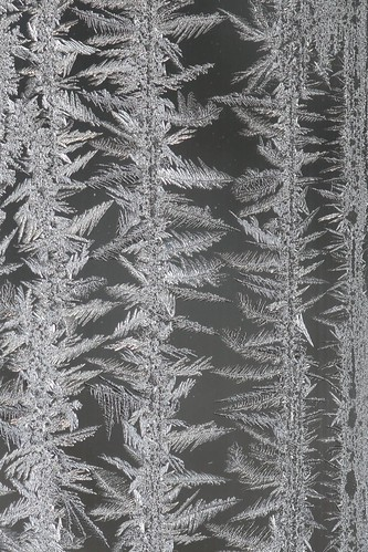 window-frost-rows