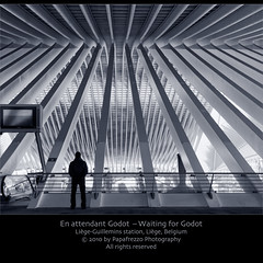 En attendant Godot - Waiting for Godot (Front Page) (Papafrezzo,  2007-2014 by www.papafrezzo.com) Tags: roof light distortion snow glass lines station silhouette architecture modern train concrete fan vanishingpoint waiting steel curves perspective platform railway wideangle arches tokina calatrava repetition vault beckett 2009 waitingforgodot tgv santiagocalatrava lige godot arche extremewideangle waitingforthetrain glassandsteel filteredlight highspeedtrain samuelbeckett hogesnelheidstrein tokina124 tokinaatx124 guillemins enattendantgodot subduedlight waitingonatrain structuralexpressionism hightech