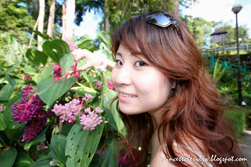 Japanese Garden 09