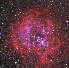 Rosette Nebula in RGB & HA (Terry Hancock www.downunderobservatory.com) Tags: camera sky mountain field night stars photography 50mm pier backyard space borg shed mini images astro observatory telescope filter 49 nebula astrophotography terry astronomy imaging ha hancock universe instruments amateur rosette cosmos deepspa