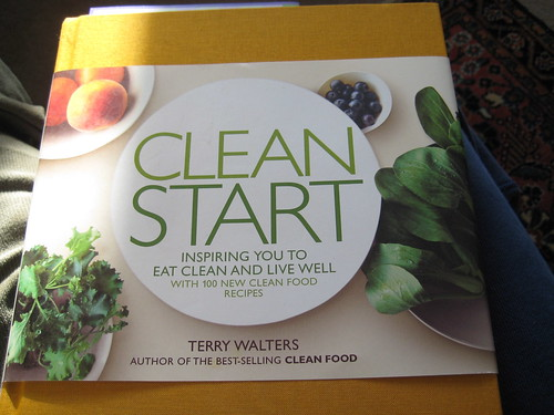 Clean Start by Terry Walters