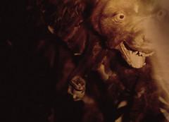 Only A Myth (Ben Morson) Tags: monster germany woods ben creature myth mythological morson