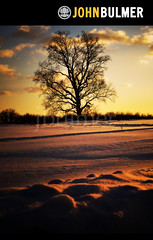 The Easton Tree (john bulmer) Tags: winter sunset sky newyork tree field clouds rural farm easton firstlightlastlight johnbulmer365