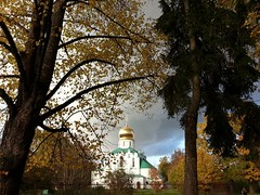 Cathedral Theodore Icon of the Mother of God. Tsarskoye  Selo.   St.Petersburg . Russia . (presteza777) Tags: cathedraltheodoreiconofthemotherofgod church pushkin tsarskoyeselo stpeterburg russia autumn automne samsung architecture