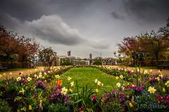 Paris004 (Joaqunrod) Tags: paris francia europa jardn viaje paisaje ciudad city fotografa