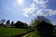 _DSC6457 (Nonesmanneslond) Tags: slovenia slovene kitnivhr