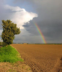 Lincolnshire Rainbow (crusader752) Tags: brown green grass landscape rainbow earth lincolnshire haystack tilled stormclouds hedgerow ploughedfield keadby cloudsstormssunsetssunrises