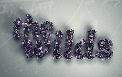 the wilds (DLGNCE) Tags: wild photoshop typography cinema4d c4d pshop type typo thewilds