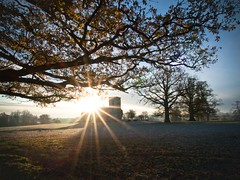 The Sun Brings Life (Anologital) Tags: uk greatbritain morning autumn light england colour tree church saint sunrise landscape oak mary northamptonshire olympus stmary zuiko northants 1122 uplands fawsley zd esystem e410