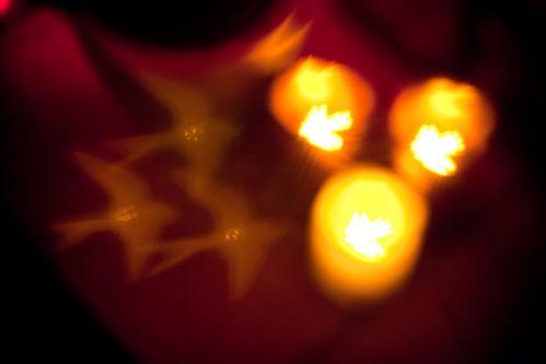 Bokeh birds. (taken over candles.)