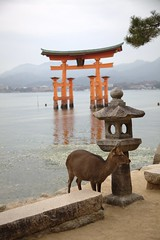 itsukushima at