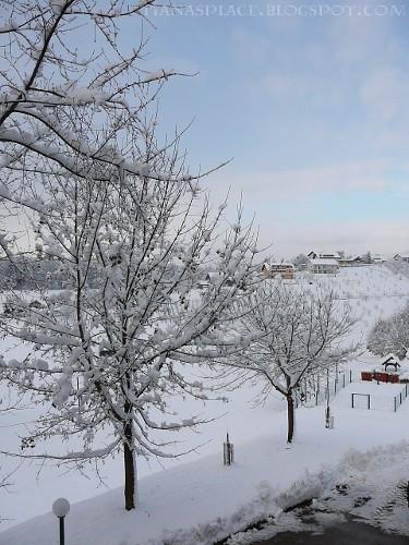 le paysage en hiver